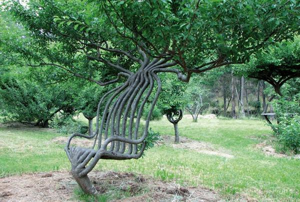 ghế cây